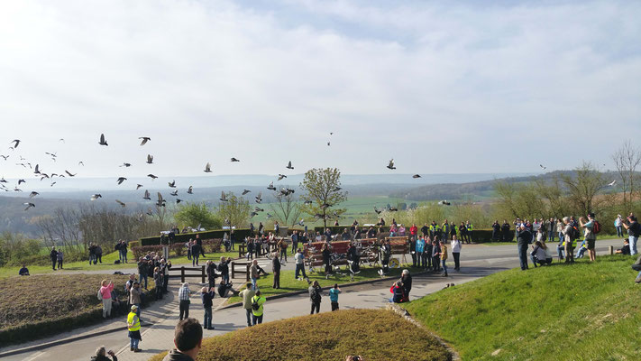 Lâcher des pigeons de la paix le 16 avril à Craonne