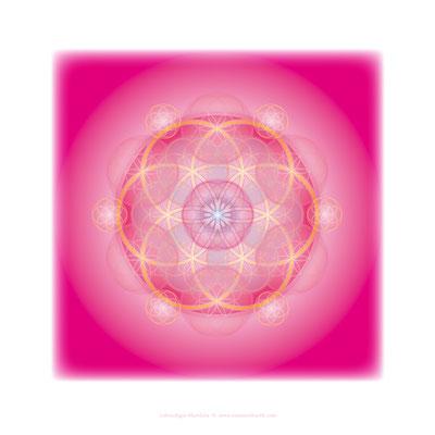 "Lebendiges Mandala aus der COLOUR LINE ""Leidenschaft"", Echtfoto hinter Acrylglas © Susanne Barth"