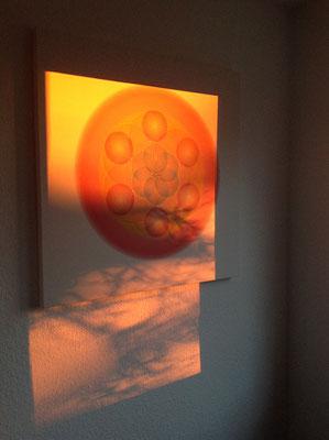Lebendiges Mandala aus der WHITE LINE im stimmungsvollen Abendlicht, in Privaträumen © Susanne Barth