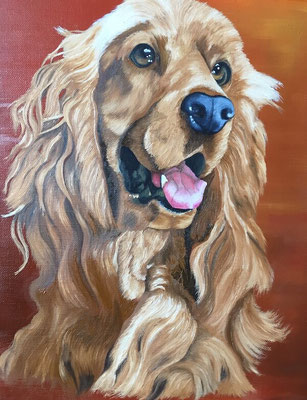 Golden Retriever - Copyright Joel GEORGE 2017