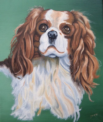 King Charles 2 - Copyright Joel GEORGE 2017