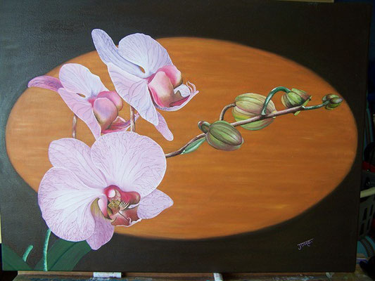 Orchidée - Copyright Joel GEORGE 2011