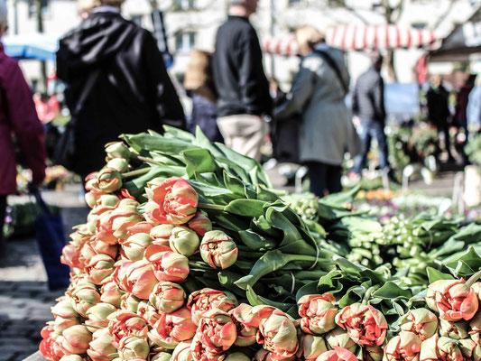 54_Findorffer Markt. ©Daniel Zaidan/dezettgrafik
