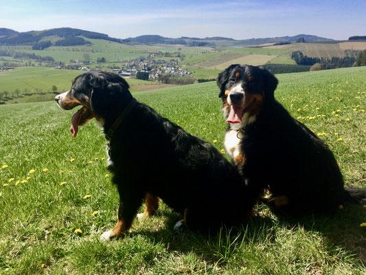 Alva und Freda genießen die Aussicht.