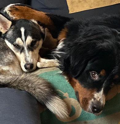 Arun und Beon