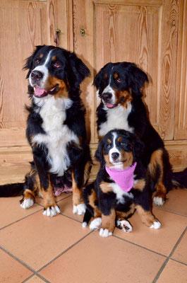 Alva, Freda und Anni März 2019