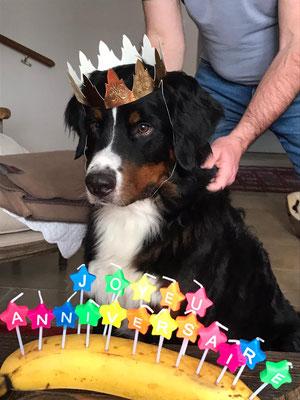 Theo an seinem Geburtstag