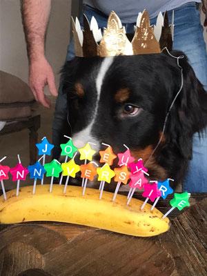 Theo und seine Geburtstagsbanae