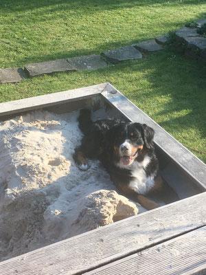 Anouk im Sandkasten