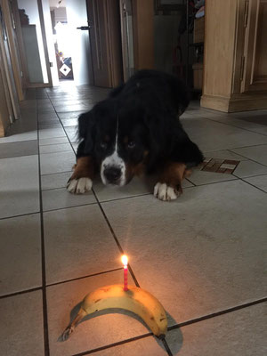 Aljoscha und seine Geburtstagsbanane