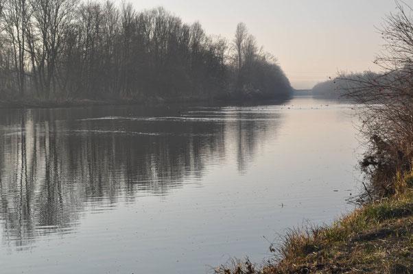Unsere Heimat, kein Flutpolder Leipheim. (Bild: Dieter Blaich)
