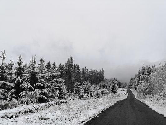 Schnee im Rothaargebirge