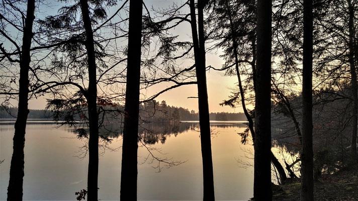 Vittsjön - Skåne