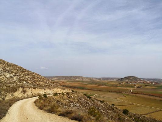 Camino Frances nahe Burgos