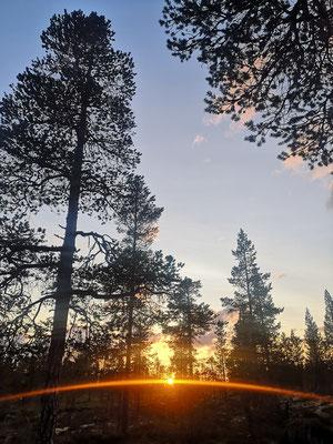 Sommersonne bis spät in die Nacht