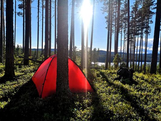 Finnskogen, Südnorwegen nahe der schwedischen Grenze