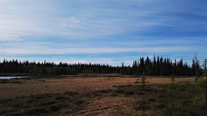 Oldflån-Ansättens Naturreservat