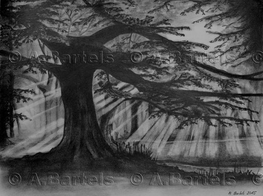 Trees IV