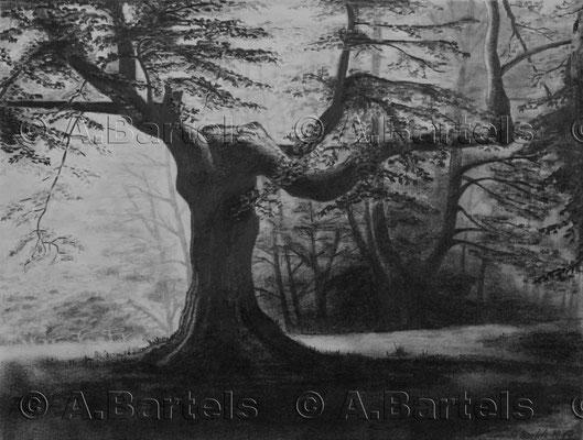 Trees II