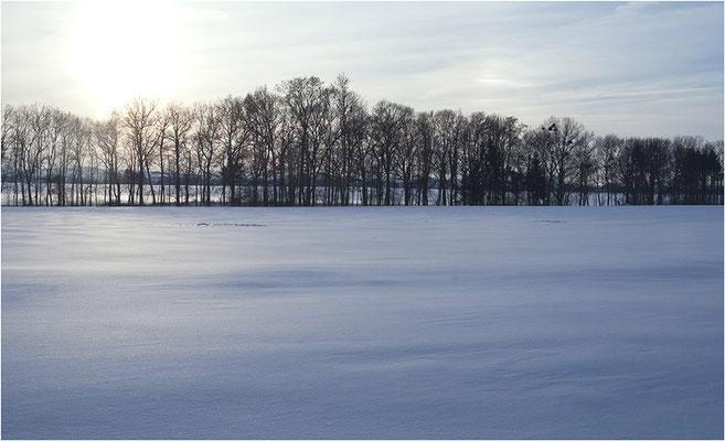 Winterimressionen Schaumburg