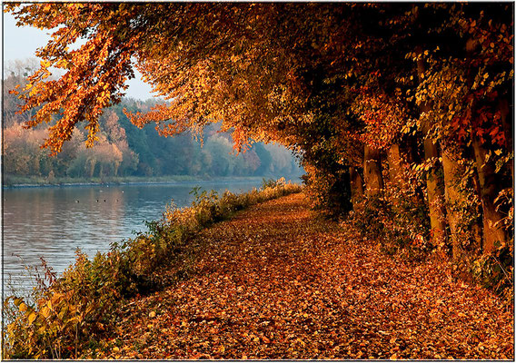 Mittellandkanal Bad Hiddenserborn
