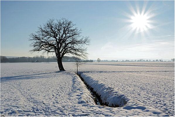 Winterimpressionen Schaumburg