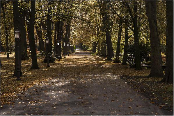Stadtgarten Stadthagen