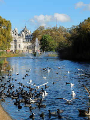 Londres - Parc Saint James