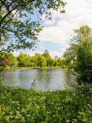 Londres - Regent's Parc