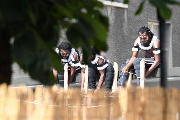 Les échassiers du Togo