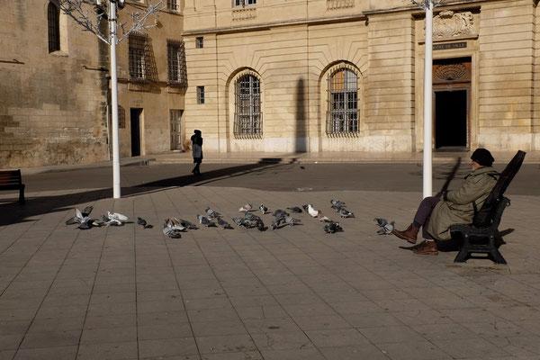 L'homme aux pigeons Arles décembre 2013