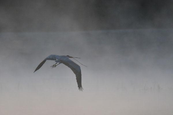 Lac Remoray avril 2015