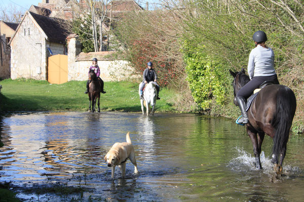 Le gué du village où les chevaux passent en revenant à l'écurie