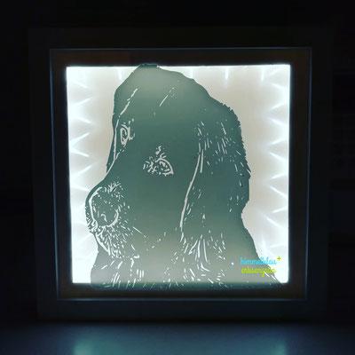 beleuchteter Rahmen mit Foto/ Bild nach Wunsch     Preis a.A.