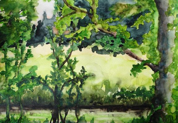 Am Bach, 2005, 50 x 65xm, Aquarell