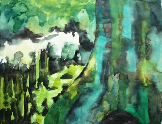 Baumstamm, 2005, 50 x 65cm, Aquarell