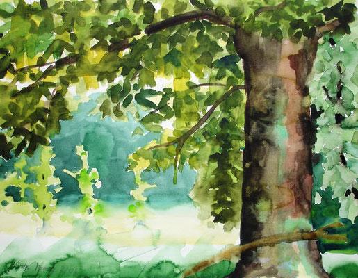 Im kühlen Schatten, 2006, 50 x 65cm, Aquarell
