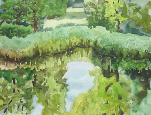 Wasserspiegelung am Lichtensee, 2005, 50 x 65cm, Aquarell