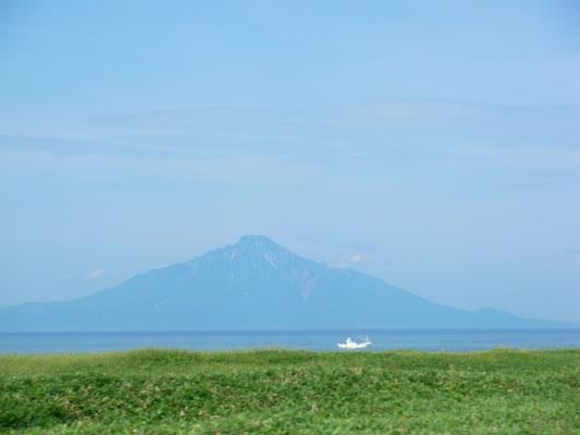 豊富町付近から利尻富士