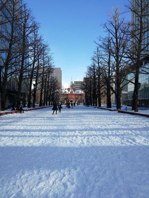 札幌市。赤レンガ道庁