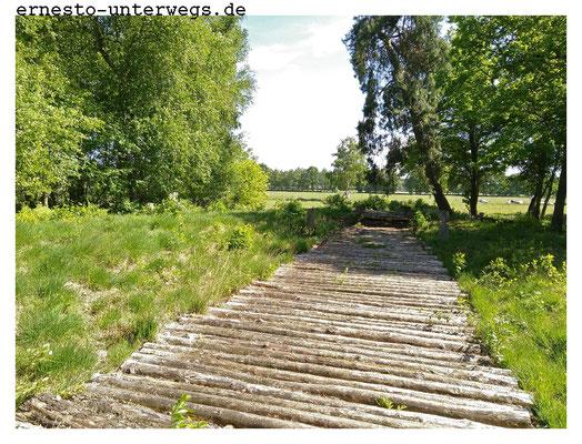 Der nachgebaute prähistorische Bohlenweg