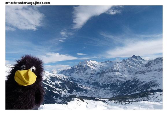 Grindelwald mit Wetterhorn und Schreckhorn