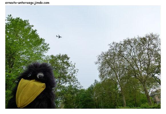 Das idyllische Pankow ist leider mit Flugverkehr geschlagen.