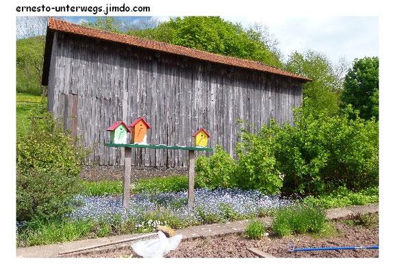 .....Ferienhaus-Siedlung für Vögel