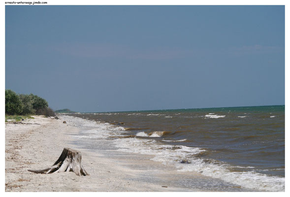 Ein Muschelstrand am Schwarzen Meer