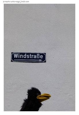 """Durch """"den"""" Wind - Straße"""
