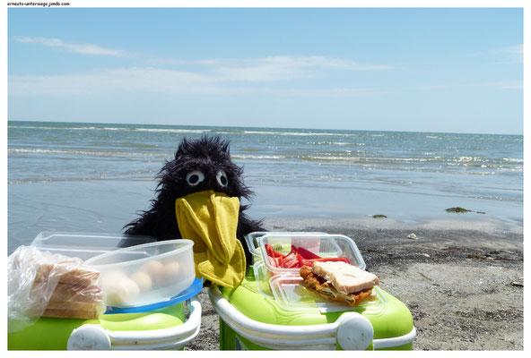 Picknick am Schwarzen Meer!