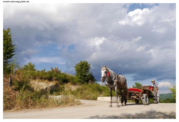 Auch Arbeitstiere sind wichtig. Pferdekarren sind auf dem Dorf häufiger zu sehen.