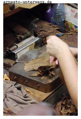 Die Füllblätter werden gerollt und mit einem Deckblatt umwickelt. Um richtig abzubrennen, dürfen sie nicht zu fest und nicht zu locker gerollt werden.