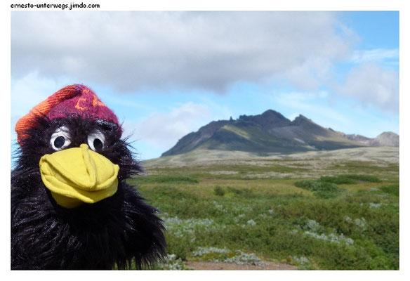 Am Aussichtspunkt Sjónarnípa. Ihr könnt direkt zum Svartifoss gehen. Oder noch bis zum Fuß der Felsen aufsteigen und da den Rücken queren. Oder ihr geht noch auf die höchste der Felsspitzen, dem Kristínartindar.